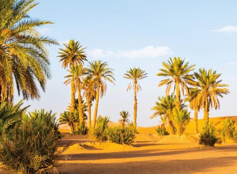 Tour in het zuiden van Marokko naar de woestijn van Merzouga