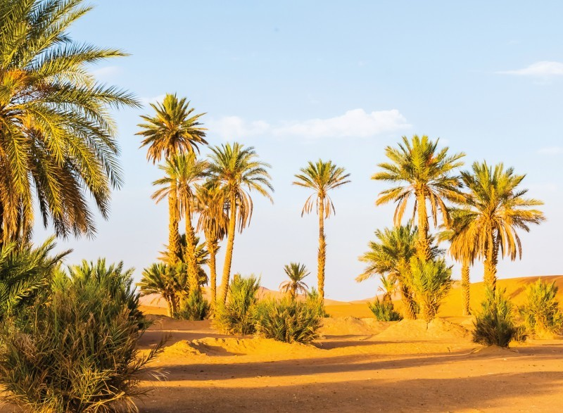 Vanuit Ouarzazate