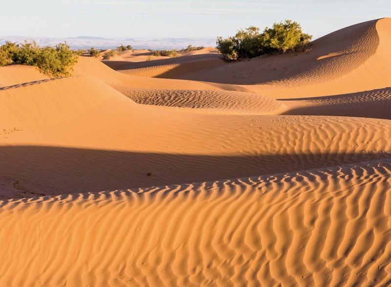 Product Privétour naar de woestijn van M'hamid en Chegaga via koningsstad Marrakech en Ouarzazate