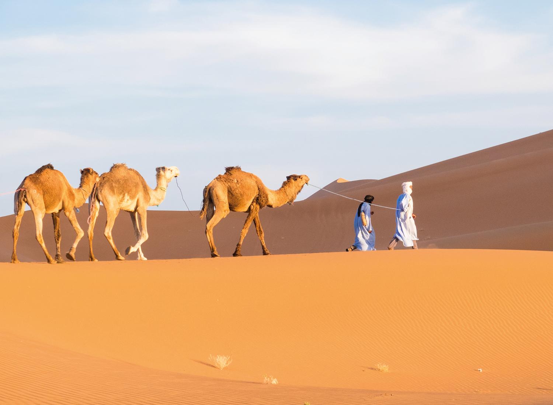 2 overnachtingen in de woestijn van Marokko | Privé tour 4WD tour Marrakech – M'hamid – Chegaga 160 km een échte woestijn belevenis