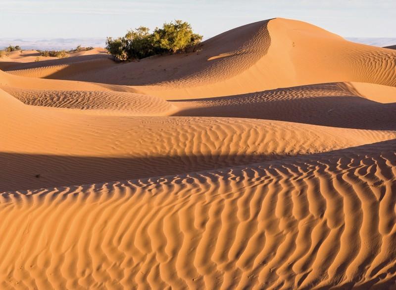 Avontuurlijke 2 daagse tour Marrakech – M'hamid