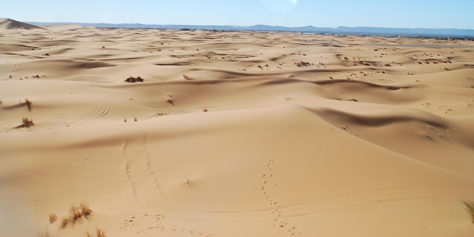 Vanuit Fes naar de Sahara en Todrakloof