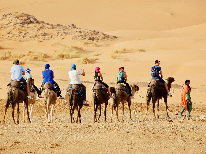 Kamelenexcursie Palmeraie Marrakech - 2 uur als nomade door de uitgedroogde palmtuinen van Marrakech start vanuit jouw accommodatie in Marrakech