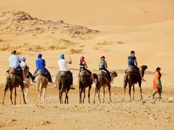 Product Kamelenexcursie Palmeraie Marrakech - 2 uur als nomade door de uitgedroogde palmtuinen van Marrakech start vanuit jouw accommodatie in Marrakech